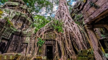 Guide to the Temples of Angkor
