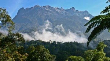 Natural Borneo