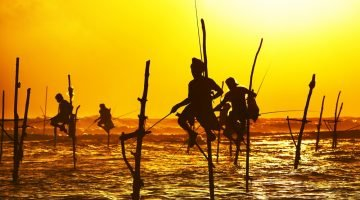 Five Reasons to Visit Sri Lanka