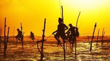 Five Reasons to Visit Sri Lanka